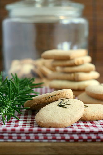 Rosemary biscuit